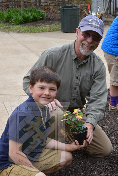 Planting in the garden
