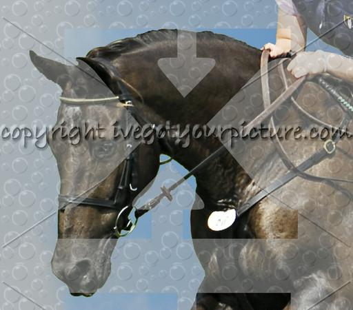 Rider #20