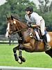 Rider #31