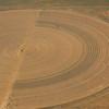 Another center pivot hayfield