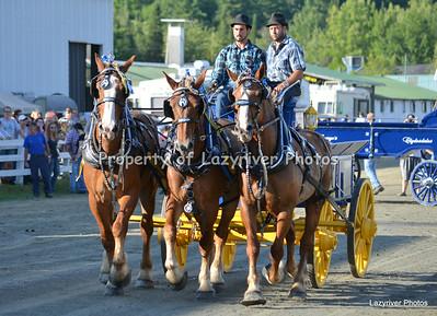 Saturday Heavy Horses