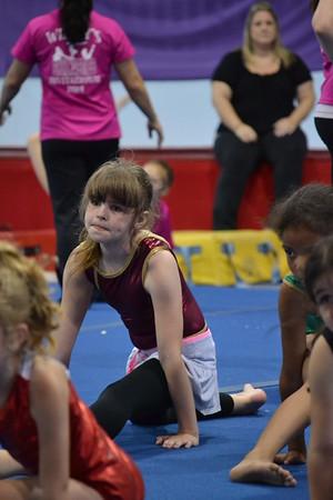 2014 June Gymnastics