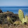 20140510033-Parsons Landing, Catalina