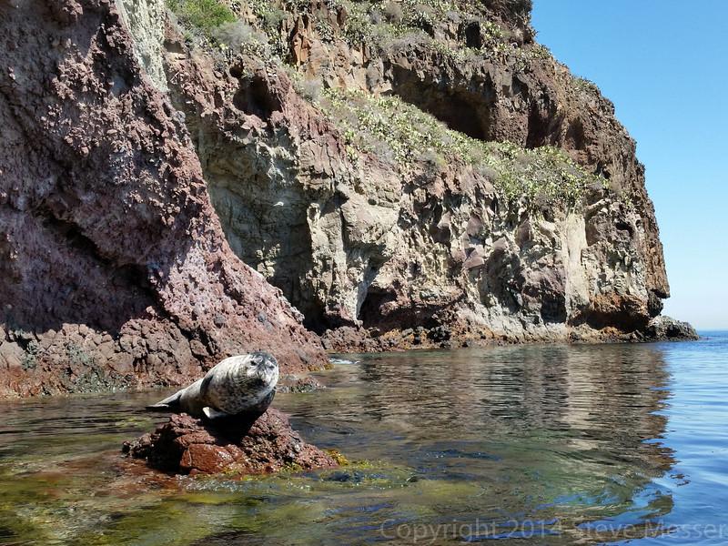 20140510142-Two Harbors Sea Kayaking, Catalina