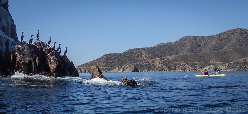 20140510029-Two Harbors Sea Kayaking, Catalina