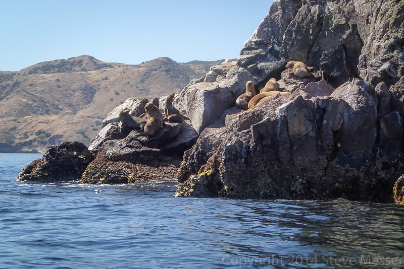 20140510026-Two Harbors Sea Kayaking, Catalina