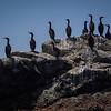 20140510206-Two Harbors Sea Kayaking, Catalina