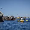 20140510192-Two Harbors Sea Kayaking, Catalina