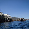 20140510199-Two Harbors Sea Kayaking, Catalina