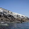 20140510232-Two Harbors Sea Kayaking, Catalina