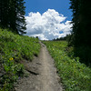 20140815019-401 Trail, Crested Butte