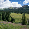 20140815011-401 Trail, Crested Butte