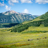 20140815002-401 Trail, Crested Butte