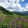 20140815013-401 Trail, Crested Butte