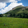 20140815020-401 Trail, Crested Butte