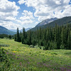 20140815015-401 Trail, Crested Butte