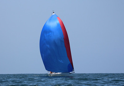 Cal Race Week-7960