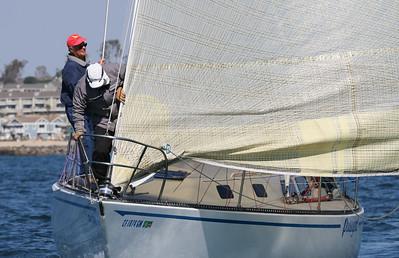 Ocean Series 2-3645