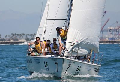 Harbor cup-1439