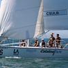 Harbor cup-1075