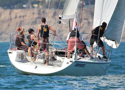 Harbor cup-1334