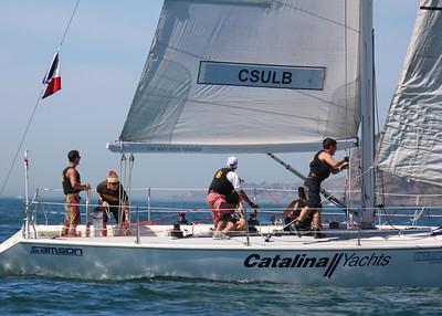 Harbor cup-1329