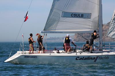 Harbor cup-1330