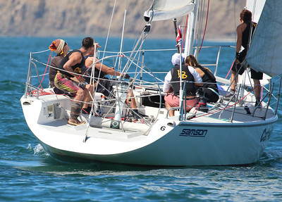 Harbor cup-1335
