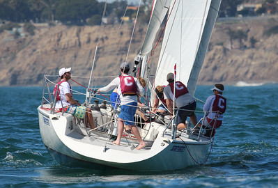 Harbor cup-1339