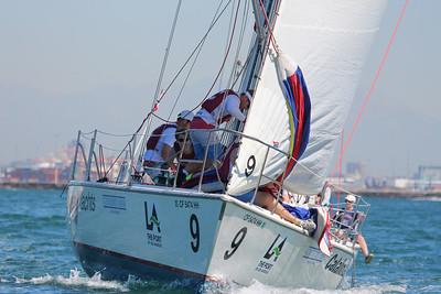 Harbor cup-1196
