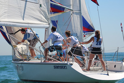 Harbor cup-1264