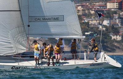Harbor cup-1366