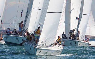 Harbor cup-1171