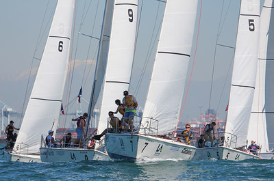 Harbor cup-1169