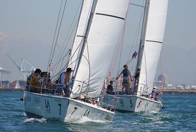 Harbor cup-1181