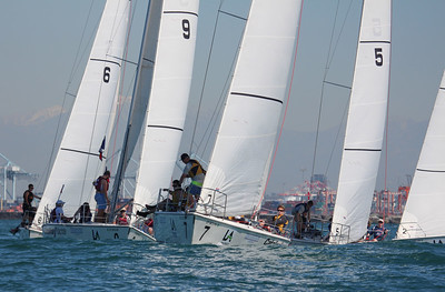 Harbor cup-1168