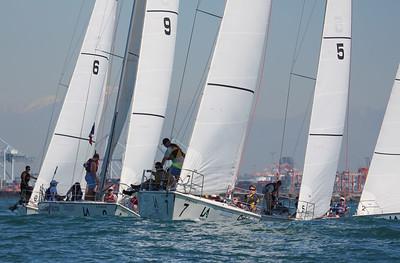 Harbor cup-1168