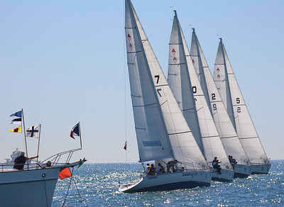 Harbor cup-1104