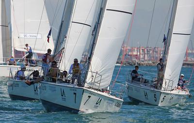 Harbor cup-1176