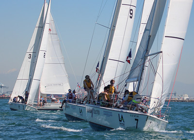 Harbor cup-1189