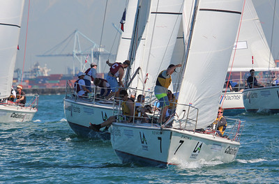 Harbor cup-1173