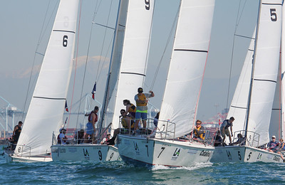 Harbor cup-1170