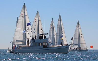 Harbor cup-1093