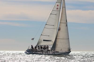Harbor cup-3261