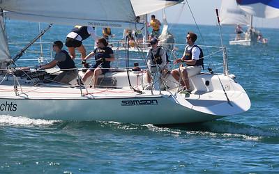 Harbor cup-1317