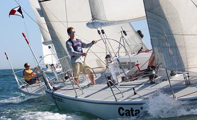 Harbor cup-2799