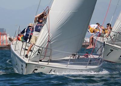 Harbor cup-2910