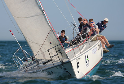 Harbor cup-2785