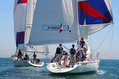 Harbor cup-1246