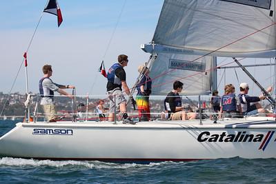 Harbor cup-2224